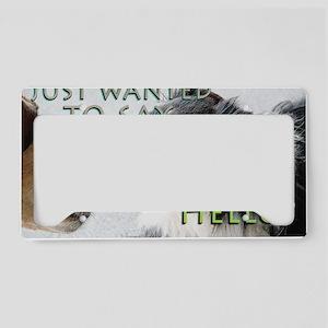 8x10_200_noseHello License Plate Holder