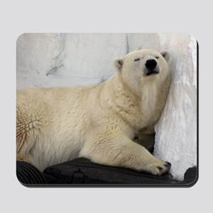 Polar Bear looking sleepy 2 Mousepad
