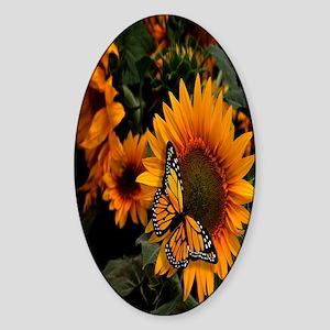 Sunflower Radiance Monarch Butterfl Sticker (Oval)