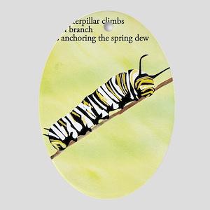 Caterpillar Haiku Oval Ornament