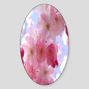 Pink flowers Sticker (Oval)