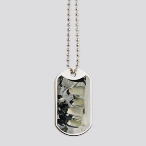 Group of Adelie Penguins Dog Tags
