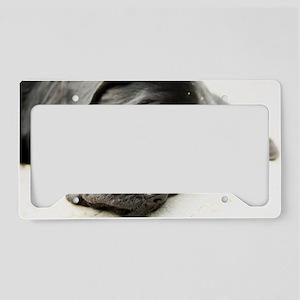 mastiff License Plate Holder