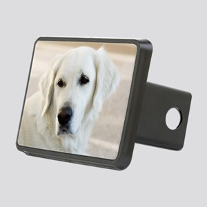dreamstimefree_2397201 Rectangular Hitch Cover