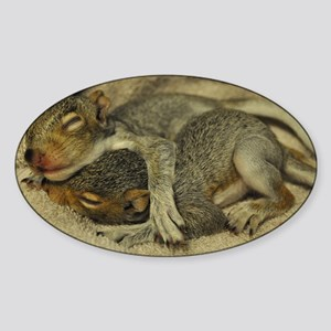Baby squirrels cuddle L Sticker (Oval)