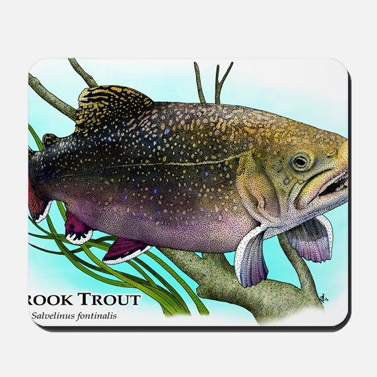 Brook Trout Mousepad