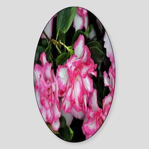 Pretty Pink flower nook Sticker (Oval)