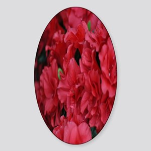 red flower kindle Sticker (Oval)