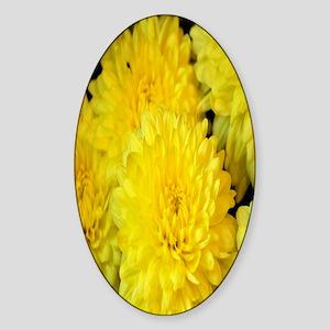 yellow chrysanthemum nook Sticker (Oval)