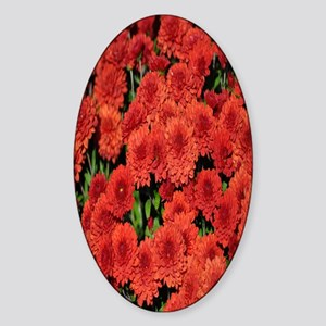 red chrysanthemum nook Sticker (Oval)