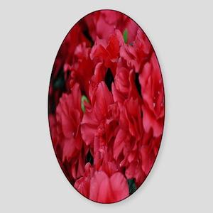 red flower nook Sticker (Oval)