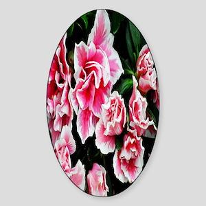 bright pink flower nook Sticker (Oval)