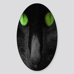 cat-picture-green-eyes-kindle Sticker (Oval)