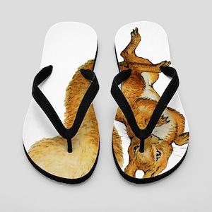 Squirrel Nutkin_Beatrix Potter015 Flip Flops