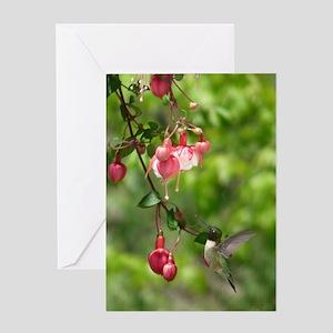 HM6.606x9.86 Greeting Card