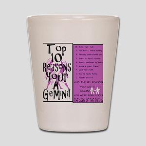 Gemini6 Shot Glass