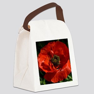 Vibrant Red Poppy Canvas Lunch Bag