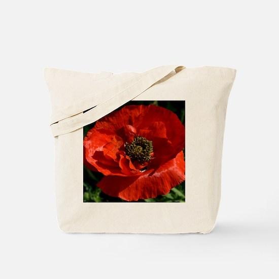 Vibrant Red Poppy Tote Bag