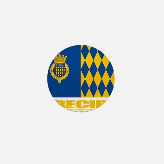 Arecibo Flag Mini Button