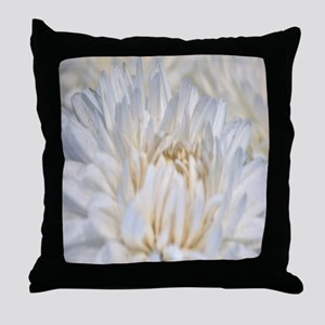 meijers garden 101010 032 Throw Pillow