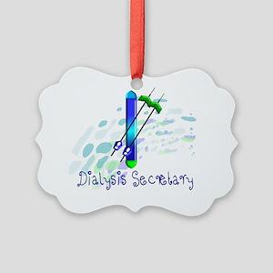 Dialysis secretary 2011 Picture Ornament