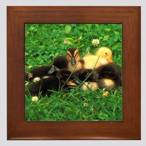 ducklings Framed Tile