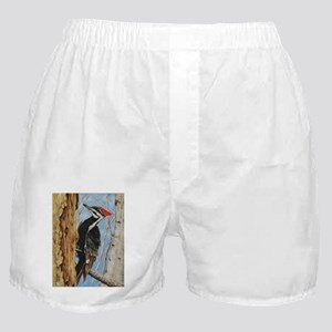 Home Sweet Home Boxer Shorts