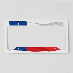 TEXAS FLAG License Plate Holder