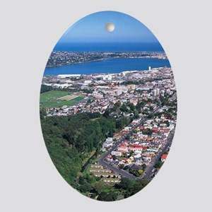 Botanic Gardens and Dunedin - aerial Oval Ornament