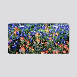 BLUEBONNETS AND PAINTBRUSH  Aluminum License Plate