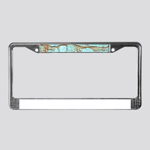 TURQUOISE MARBLE License Plate Frame
