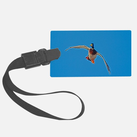 D1232-088hdr Luggage Tag