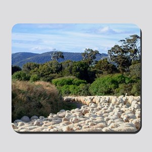 NZ, Catlins. Sheep Herd on Road 2. Mousepad