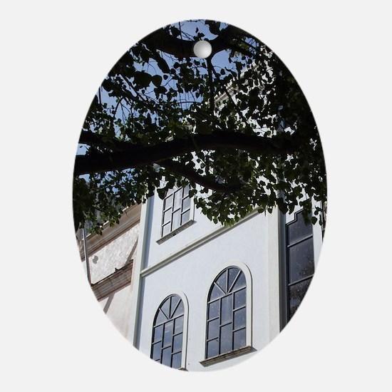 Buildings along Calle El Condengo, Z Oval Ornament