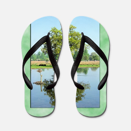 Tree3 Flip Flops