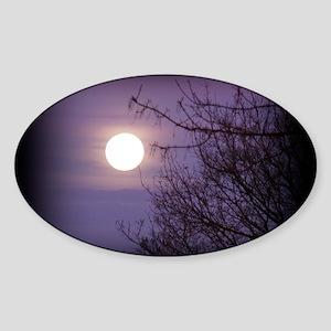 Moon10 Sticker (Oval)