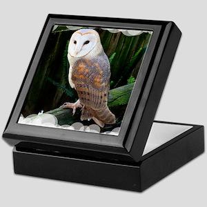 Owl2 Keepsake Box