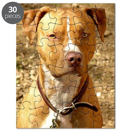 Dog002 Puzzle