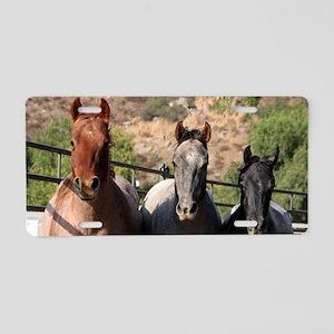 3 horses clutch Aluminum License Plate