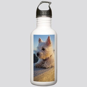 West Highland Terrier  Stainless Water Bottle 1.0L