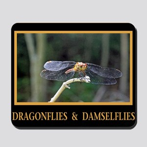 Dragonfly and Damselfly image Mousepad