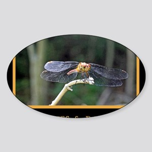 Dragonfly and Damselfly image Sticker (Oval)