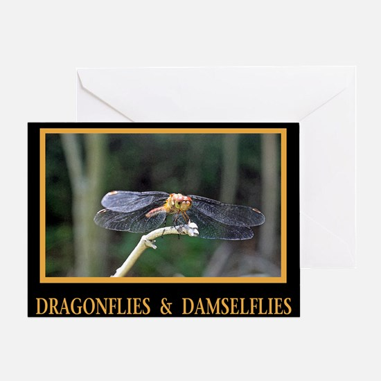 Dragonfly and Damselfly image Greeting Card
