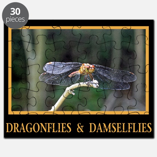 Dragonfly and Damselfly image Puzzle