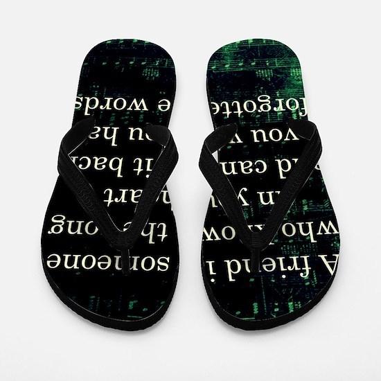 friendpillow Flip Flops