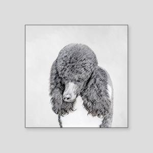 "Standard Poodle (Parti) Square Sticker 3"" x 3"""