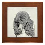 Standard Poodle (Parti) Framed Tile