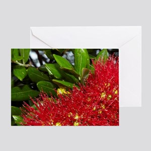 Pohutukawa flowers, Russell, Bay of  Greeting Card