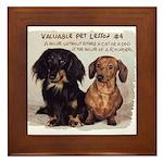 Valuable Pet Lesson #4 Framed Tile