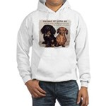 Valuable Pet Lesson #4 Hooded Sweatshirt